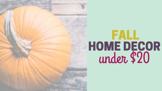 Cheap Fall Home Decor under $20