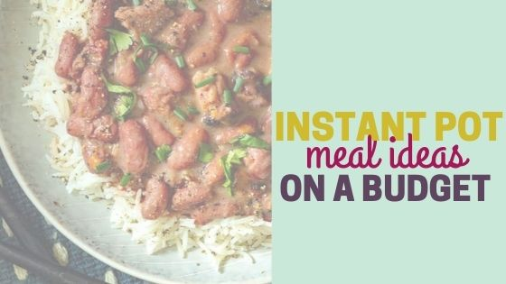 Instant Pot Meals on a Budget